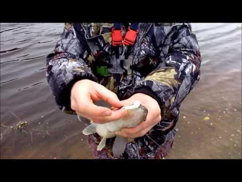 видео про как ловят рыбу