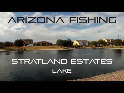 Arizona Fishing Monster Catfish