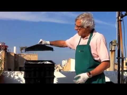 Video tutorial Huerto Urbano. Paso 8. Extraer humus del vermicompostador.