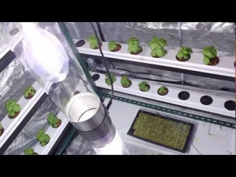 Grow Room   Vertical Grow   Big Buddha Box