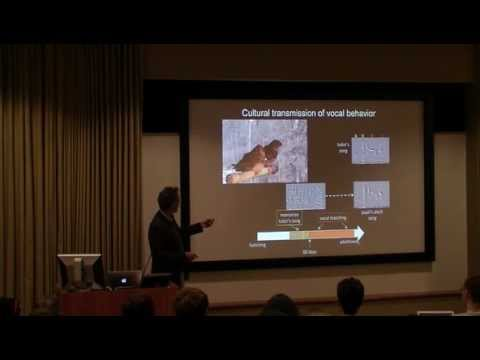 Dr. Rich Mooney - Song Learning: From Synapse to Behavior p1/3