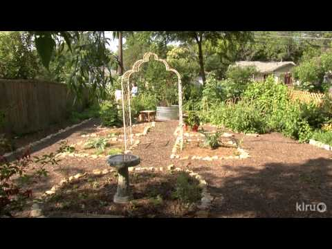 Food and flowers vegetable garden design|Ellie Hanlon|Central Texas Gardener