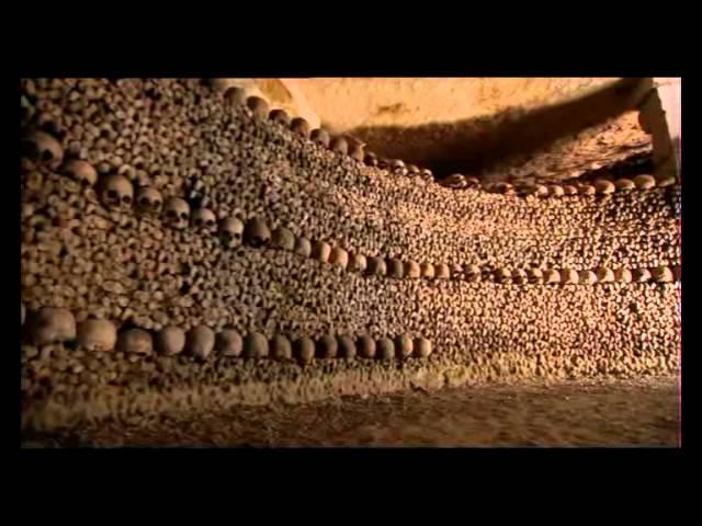 Neuvěřitelné lidské tělo CZ dabing   Dokumentární, USA, 2007 nejlepsi filmy mypage cz