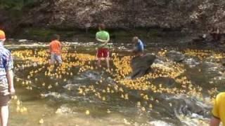 4-H Duck Race ithaca, NY
