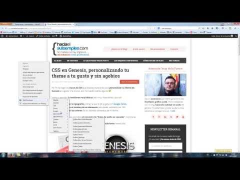 Web developer o cómo identificar los elementos de tu blog con Genesis