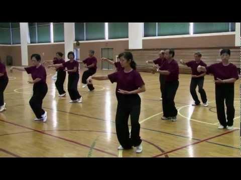 Tai Chi Chen's 74th Form at Honolulu Tai Chi, Qigong & Martial Arts