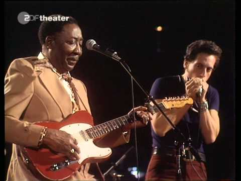 Muddy Waters - Live Dortmund, Germany 29/10/1976