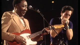 Muddy Waters - Live Dortmund, Germany 29/10/1976