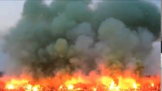 Hannover Pyroshow vs. Oldenburg (Hannover 96 II - VfL Oldenburg 22.05.15)