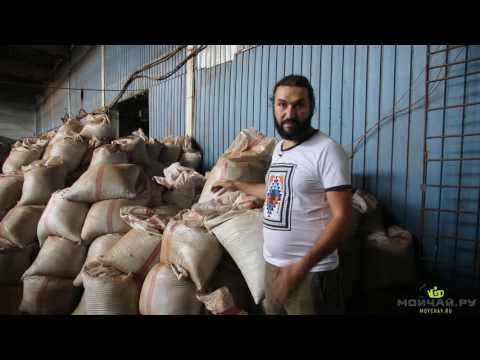 Грузия. Путешествие за грузинским чаем. июнь 2016. Кобулети, Батуми, Чакви, Тбилиси