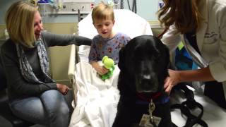 A Day in the Life of Fraser: Chippenham & Johnston-Willis Hospitals