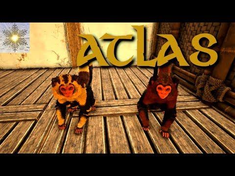 Tiere zähmen | ATLAS | Gameplay German Deutsch
