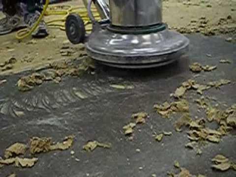 Remove carpet adhesive floormavencom youtube for How to remove carpet adhesive from hardwood floors