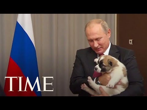 Here's The Awkward Moment When Vladimir Putin Got A Puppy As A Gift | TIME