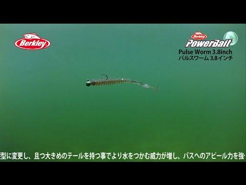 【水中動画】Pulse Worm 3.8inch(パルスワーム3.8インチ)