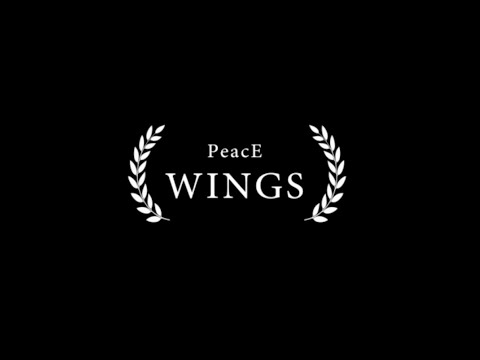Baghdad City Of Peace Carnival IV Documentary (Peace Wings)