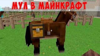 Как Назвать Коня в Майнкрафт