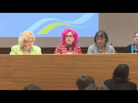 Gender and economy - 20 years after Beijing, discussion