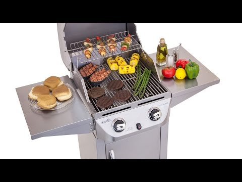 Char-Broil Stainless 2-Burner Gas Grill - Lowe's Exclusive
