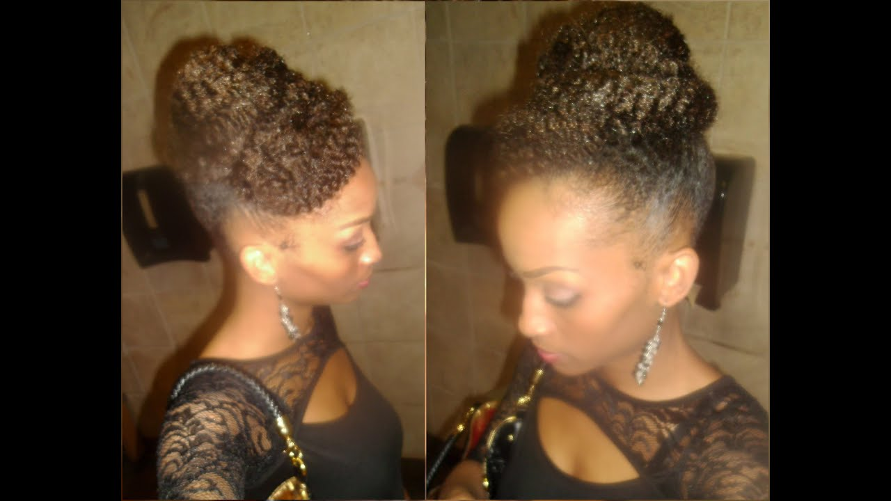Natural Hair Styles With Marley Hair: Natural Hair: Marley And I: Marley Braiding Hair Updo And
