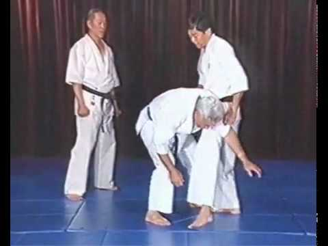 KYOKUSHIN KARATE SELF DEFENSE TRAINING SOSAI MAS OYAMA 3 Image 1