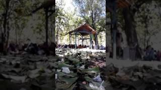 download lagu Pengajian Di Makam Saat Sedekah Bumi/yadran/manganan Di Bojonegoro/purwosari /dusun gratis