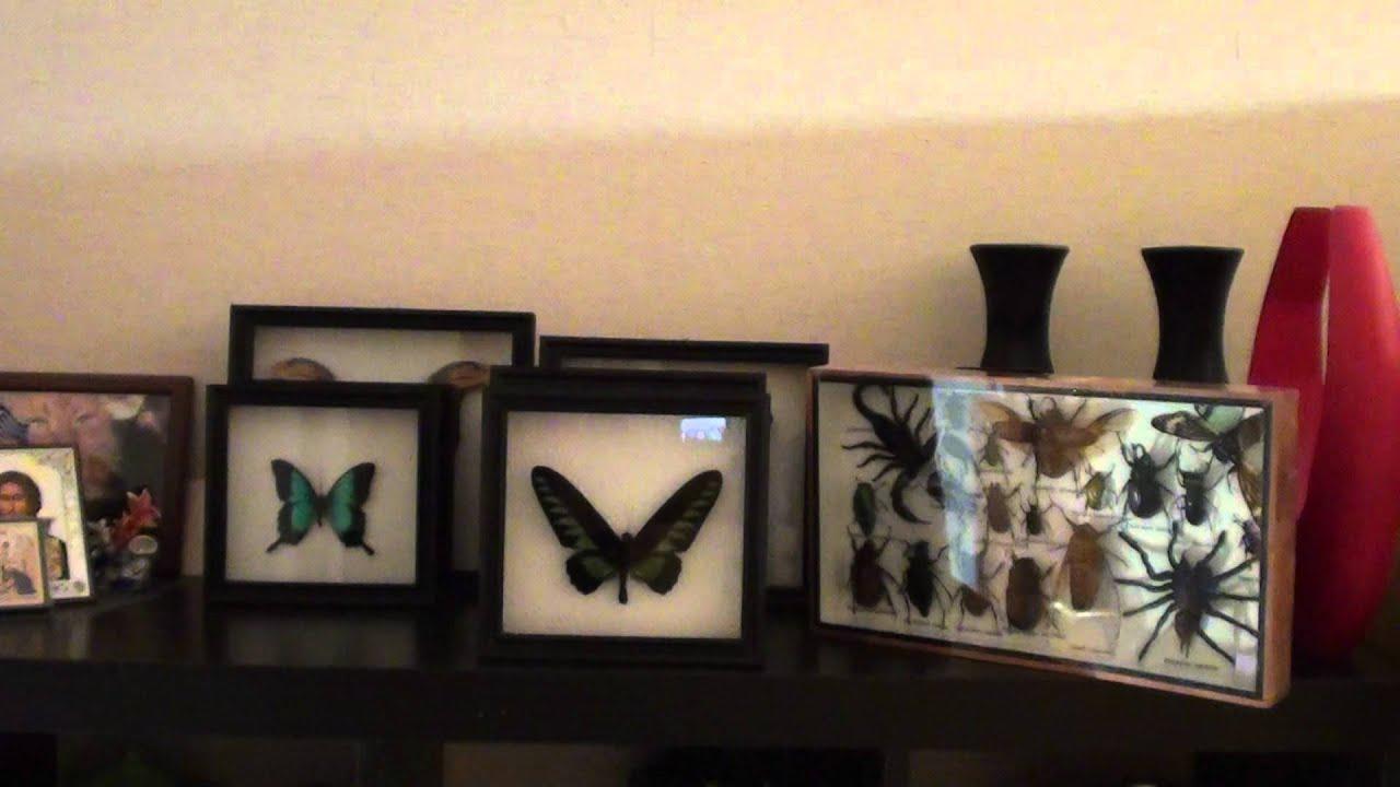 Рамка для фото своими руками с бабочками