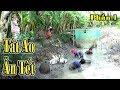 Tát Đìa Bắt Cá Nhà Bé Nhi Ăn Tết Miền Tây/catch the fish/NGÃ NĂM TV