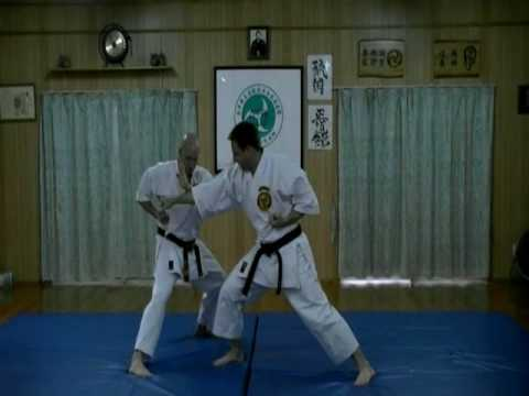 OKINAWAN RYUKOKU SEIDOKAN KARATE 11 ADVANCE SELF DEFENSE TECHNIQUES  #1 #2 #3 #4. Image 1