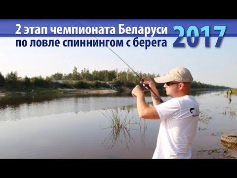 ловля на микашевичском канале
