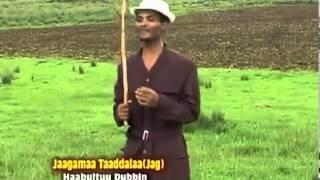 Jaagamaa Taaddalaa   Haabultuu Dubbin (Oromo Music)