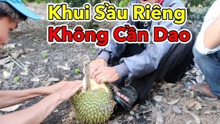 Lamtv - Khui Sầu Riêng Không Cần Dao   Ăn Trái Cây Ngay Tại Vườn