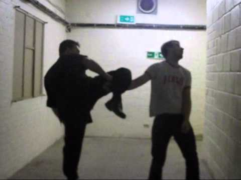 Rapid Jeet Kune Do Concepts Image 1
