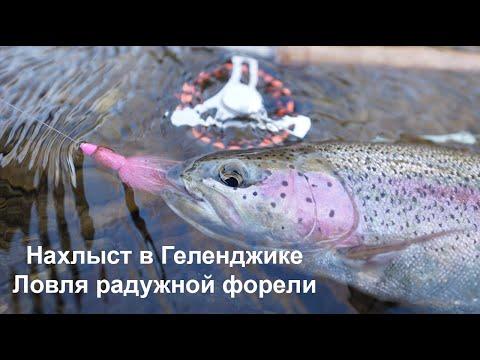 Радужная Форель Геленджик 2008.wmv