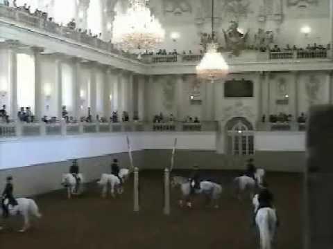Lipizzaner Stallions Vienna 2008 0001