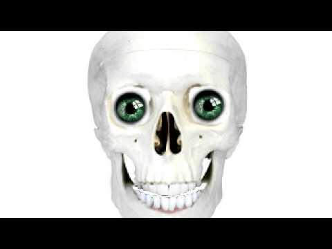 talking skulls 3000000 thumbnail