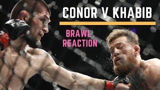 Conor v Khabib UFC 229 - Brawl Reaction