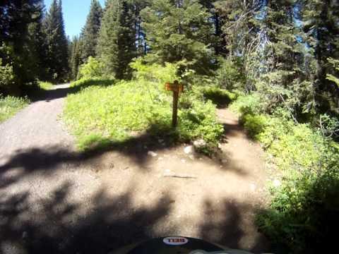 Robert Lothrop mountain biking in McCall