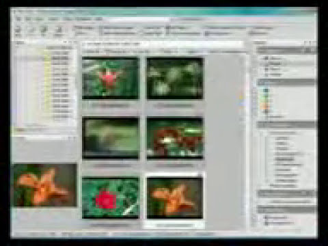 To edit your photos, Make it appear as very special by ACDSee Photo Manager 2009 11 build 108.3gp