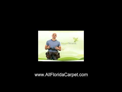 Smart Carpet Miami 305-592-4396