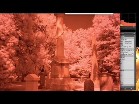 angry photographer: fast & easy infrared (720nm) white