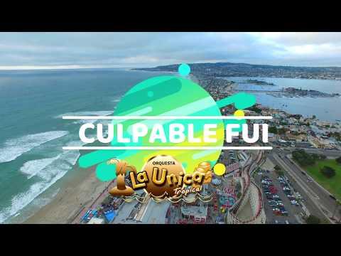 CULPABLE FUI - LA UNICA TROPICAL (VIDEO LYRIC)
