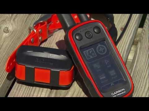 GunDogSupply.com: Garmin ALPHA (Dog Tracking Collars + GPS Collars)
