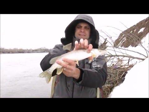 ловля в марте на москва реке