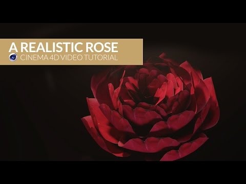 Cinema 4D Video Tutorial: Realistic Rose