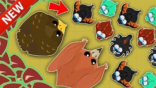 MOPE.IO / NEW GOLDEN EAGLE & PTERODACTYL INVINCIBLE GLITCH! / NEW GLITCH GAMEPLAY & TROLLING VIDEO!