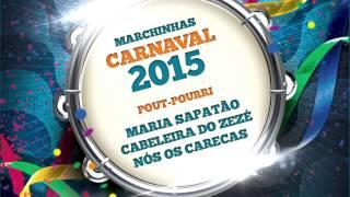 Baixar Marchinhas de Carnaval   Maria Sapatão   Cabeleira do Zezé   Nós os Carecas