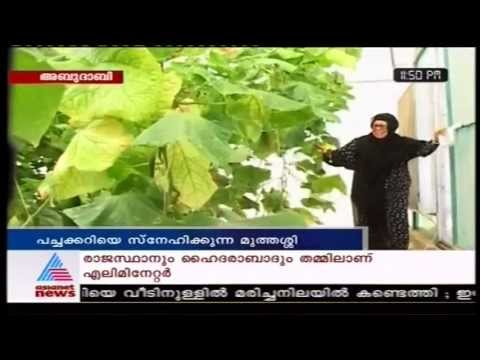 Local Lady's Farm in Abu Dhabi.  Asianet News