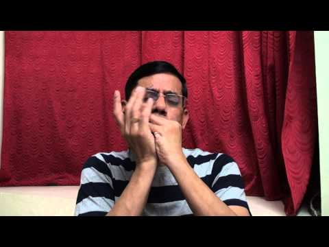 Hai  Apna Dil to Awara on Harmonica