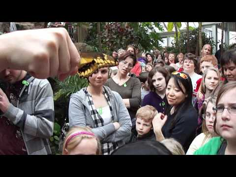 Franklin Park Conservatory BUTTERFLY LAUNCH Columbus Ohio
